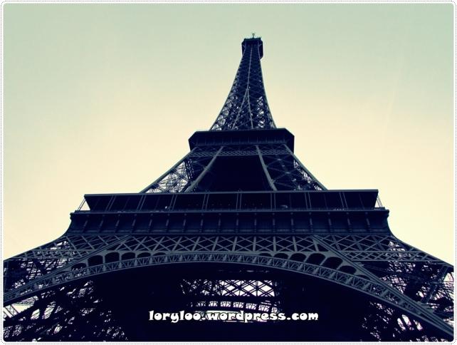Paris 26 12 2014 (64)