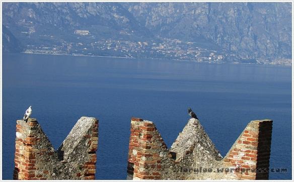 Lago di Garda - Malcesine  (10)